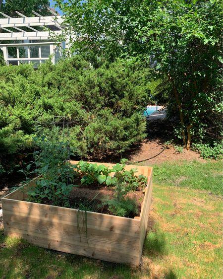 Garden http://liketk.it/3h9aC #liketkit @liketoknow.it #LTKDay #LTKhome #LTKfamily