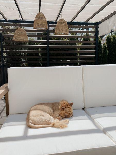 Melo is loving the new patio furniture 🤍 http://liketk.it/3ej28 #liketkit @liketoknow.it #LTKhome #LTKunder100 #LTKunder50 @liketoknow.it.home