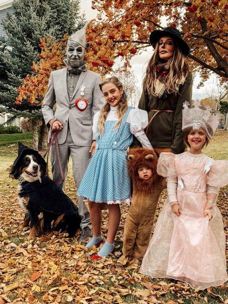 Wizard of Oz Halloween Costume, Walmart Finds, Family Halloween Costume