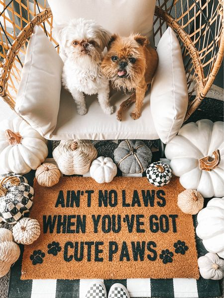 Ain't no laws when you've got cute paws!! Rounded up some of my favorite doormats from Freckled Lemon Shop!  #LTKhome #LTKunder50 #LTKsalealert