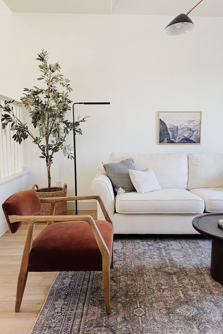 Warm Olive Green + Rust, California Casual, Parisian Living Room. Loving the combination of the white sofa, vintage inspired rug with olive green tones, and the cinnamon rust chairs! And of course, the olive tree! Design by Peggy Haddad Interiors.   #LTKhome #LTKunder100 #StayHomeWithLTK