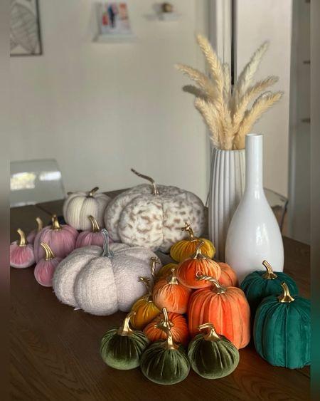 Shop a simple fall decor set up! All pumpkins under $80 total! #pumpkins #velvetpumkin #falldecor #seasonal #falldecoration  #LTKSeasonal #LTKstyletip