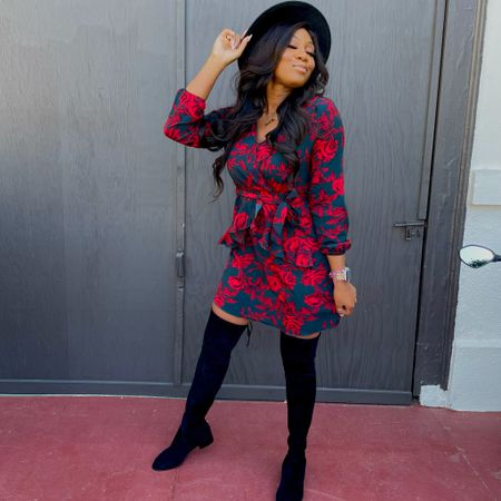 The cutest lil dress for a festive moment!  #LTKunder50 #LTKstyletip #LTKHoliday