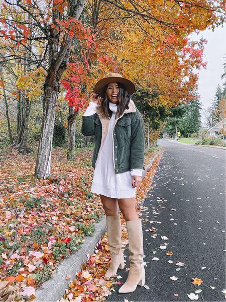 Amazon sweater dress - medium // fall family photos idea