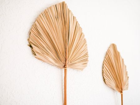 Found some dried palm leaves like the ones in our nursery! http://liketk.it/3iWYn #liketkit @liketoknow.it #LTKhome