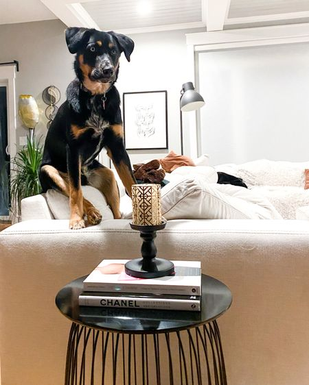 It's very clear who rules our house. This dog! And how about that side table set up. Ah, I just love home décor and creating new vibes in my new home. Bauer approves, and so do I!   Everything is linked!    http://liketk.it/37eov #liketkit #StayHomeWithLTK #LTKhome #LTKsalealert @liketoknow.it @liketoknow.it.home    You can instantly shop my looks by following me on the LIKEtoKNOW.it shopping app