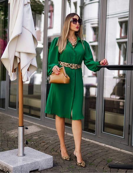 Greenery 💚  Werbung Auffallen? Kann ich ✔️ In der Hoffnung dass es euch gefällt 💚 😉  . .  #green #mididress #greendress #trendfarbe #green #fendifirst #fendifirstbag  #fendi #valentino #valentinoshoes #valentinobelt #valentinoslingbacks #shirtdress #animalprint #leoprint #leoprintshoes