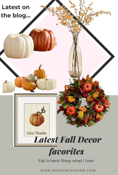 Favorite Fall decor alert! I love faux and pillow pumpkins. I also adore the branches! Shop my favorite from pottery pane and more! #pumpkin #pumpkindecor #fauxpumpkin #falldecor #falldecoration #seasonaldecor  #LTKstyletip #LTKhome #LTKSeasonal