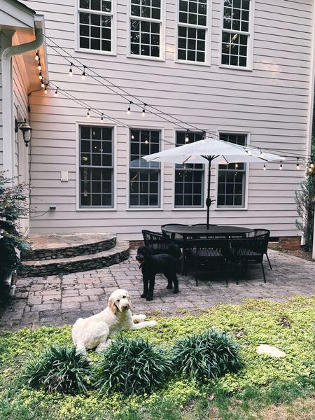✨A little glimpse into our patio we've been working on! tomorrow on the blog I'm sharing tips for updating your patio (but these could really be applied to Amy space) on a budget. When we moved in we decided to spend money in other areas but still wanted our patio to be useable (and cute obvi 🙆🏼♀️). This space was totally empty before and this little makeover was less than $1000. Have any of y'all revamped an outdoor space lately? Ps. 10/10 recommend some string lights 💡🙌🏼 linking ours plus what we used to hang them (and the umbrella ⛱ @liketoknow.it http://liketk.it/3jhBE #liketkit