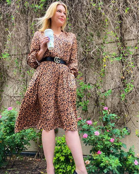 Leopard is always in season. Dress just $29 in 4 colors and TTS 👉 http://liketk.it/3ifku or Shop your screenshot of this pic with the LIKEtoKNOW.it shopping app @liketoknow.it #liketkit #LTKworkwear #LTKunder50 #LTKcurves #amazonfinds #workwear #leoparddress #weddingguest #weddinggueststyle #summerwedding #weddingguestdress #summerstyle