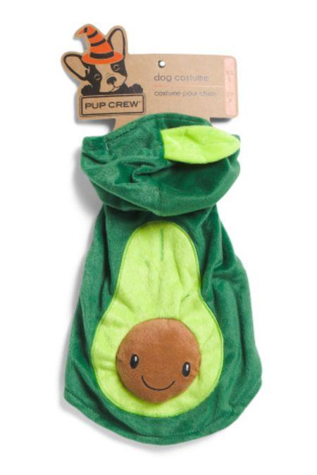 🥑 Adorable dog pet costume   #LTKunder50 #LTKkids #LTKfamily
