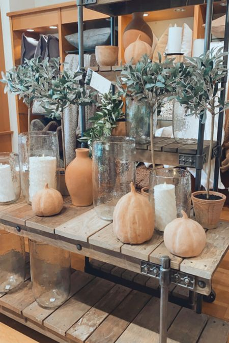 Pumpkins, neutral fall decor, olive branches, olive trees, Halloween, fall decorations   #LTKhome #LTKSeasonal