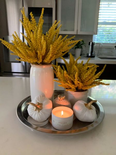 Sharing my sweet spot of Fall from my kitchen today. The very first thing I do in the morning when I walk into my kitchen is light this Fall candle. The dried arrangements are from Target and linked below. I also included my stainless steel tray from Crate and Barrel (but also added a couple that I've been eyeing and love at Target as well). My matches holder is from last season but I included a similar very cool option from West Elm. These adorable velvet plushie pumpkins with gold stems are from the Target $1 section and come in a variety of colors. It's a simple and lovely way to elevate my everyday…because, why not right? ☺️  #LTKhome #LTKfamily #LTKSeasonal
