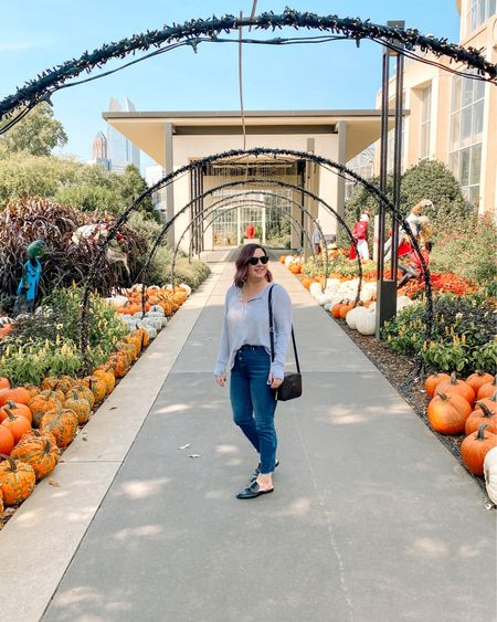 It's Thanksgiving week, so Here's my list pumpkin-y picture before it's all Christmas around here. 🍃🍂🍁    #LTKitbag #LTKFall #LTKcurves