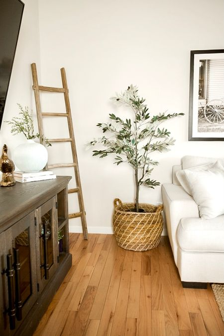 I am loving my new olive tree!!! 🤩 it was a little shorter than I expected but we fixed that with an oversized basket and planter that we flipped upside down to raise this baby up!   #LTKSeasonal #StayHomeWithLTK #LTKSpringSale