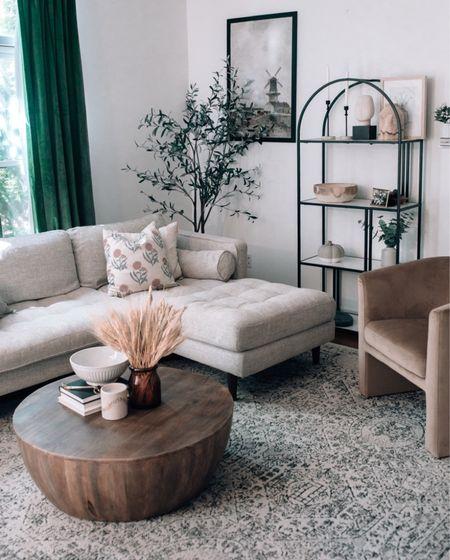 Living room decor, living room design, arched bookcase, living room ideas   #LTKHoliday #LTKhome #LTKSeasonal