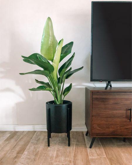 Planter and adjustable plant stand! http://liketk.it/37Syj #liketkit @liketoknow.it #LTKhome #StayHomeWithLTK #LTKunder50