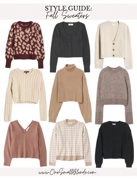 Fall sweaters 🖤🍂🍁  #LTKstyletip #LTKSeasonal #LTKunder100