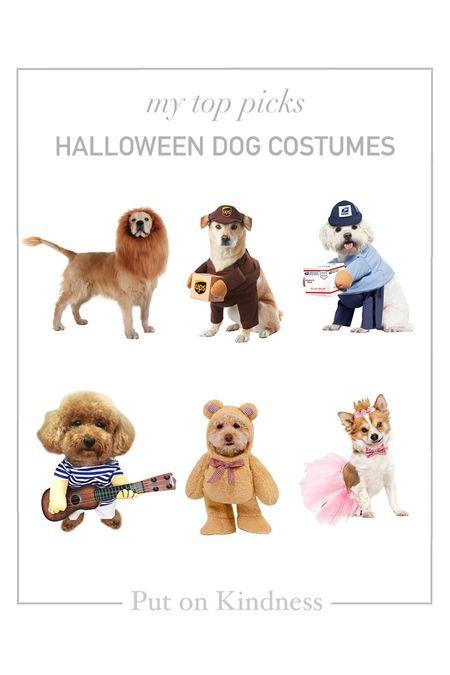 Halloween costumes for dogs. Lion, teddy bear, princess, UPS delivery man, USPS mailman   #LTKSeasonal #LTKfamily #LTKunder50