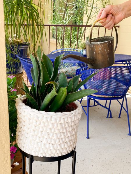 I Iike the simplicity & texture of this woven plant pot. The dark green of my Sansevieria really stands out in this white fabric basket. I bought this at Home Goods two years ago so down below you can find three very similar ones you can buy online.   #LTKstyletip #LTKhome #LTKunder50