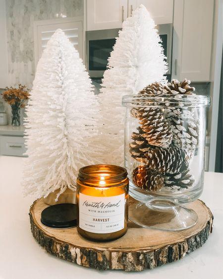 Throwback to last years centerpiece! I just love the look of bottle brush trees and pinecones 😍 http://liketk.it/32Ljq  #liketkit @liketoknow.it #LTKgiftspo #LTKhome #LTKunder50 #ltkholiday #decor #holidaydecor #homedecor