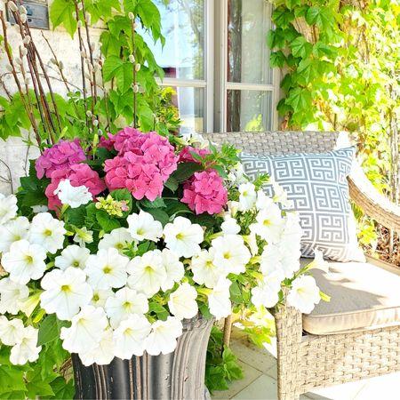 Front porch decor.  Always a fabulous job @adornplanters 🌹🌻🌸🌼🌺 🛒 { http://liketk.it/3dw9d } @liketoknow.it @liketoknow.it.home #liketkit #LTKhome