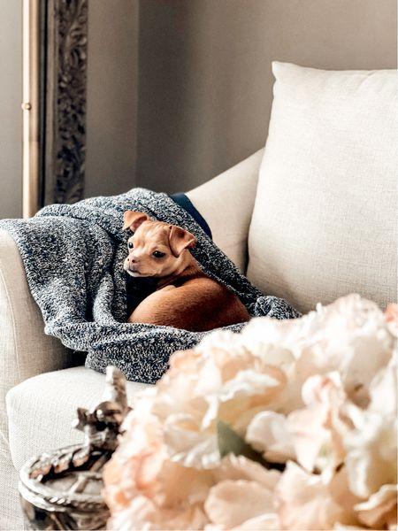 Neutral dog-friendly living room inspo.  Pottery Barn inspired living. Living room sofa.  Small spaces. Pottery Barn sofa. #potterybarn   #LTKhome #LTKSeasonal #LTKstyletip