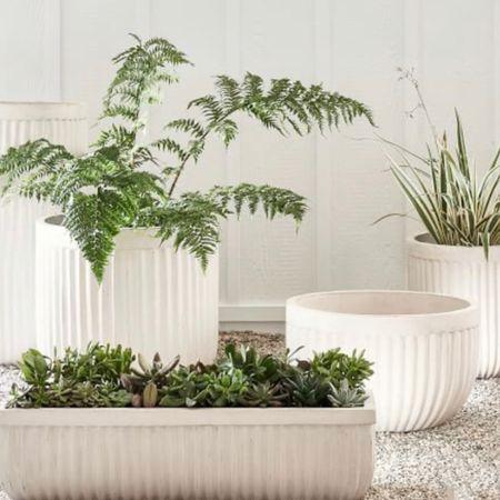 Backyard planters // outdoor // patio // http://liketk.it/3ihyN @liketoknow.it #liketkit #LTKstyletip #LTKhome