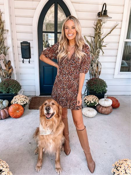 Pups & pumpkins- name a better combo 🧡 Today's look is from @nordstrom and linked in my bio! I sized up one in this dress for length! #nordstrom #partner