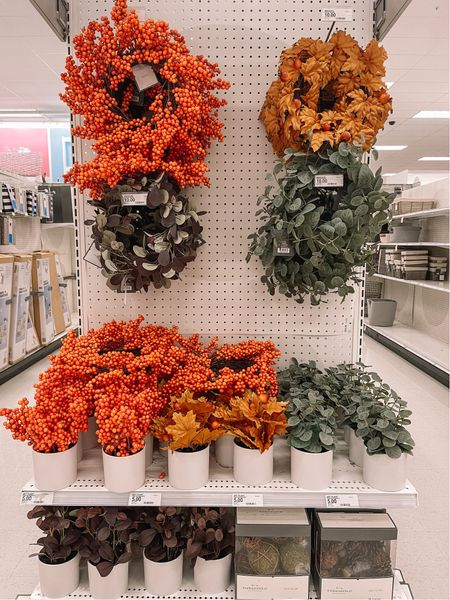 Threshold faux wreaths & plants for the fall 🍂 love the fall colors in these! Only $5-$10  #LTKunder50 #LTKSeasonal #LTKhome