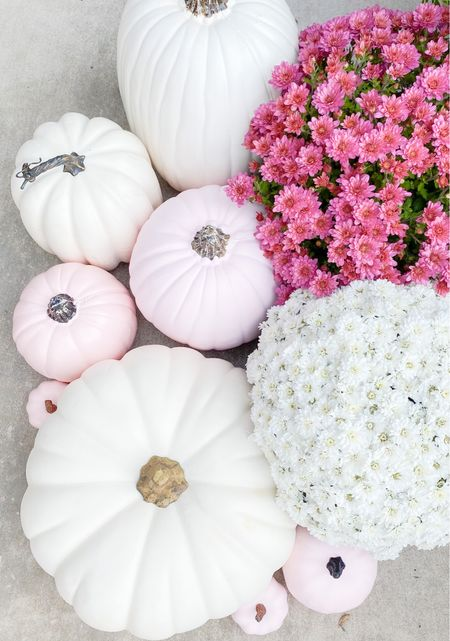 Pretty pink pumpkins.   #LTKHoliday #LTKSeasonal #LTKhome