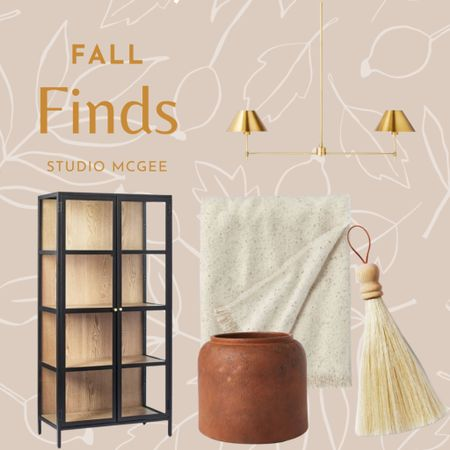 Fall home finds, black cabinet, terracotta pot planter, mini broom, fall soft throw blanket   #LTKSeasonal #LTKhome