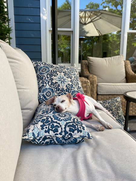 """Belle definitely approves of the outdoor furniture 🐶 💤 I have to be honest.. I may have neglected to cover my outdoor furniture/cushions for the entire winter even though they came with covers haha but they still look great! The material is stain and water resistant so it's perfect for those of us who forget to cover them more times than not. Same with these affordable decorative outdoor pillows! Everything you see here (even Belle's non-choke harness and bow) are linked for you on my LTKI. My outdoor furniture is the ultimate designer dupe for less! I've seen almost identical designs from  Pottery Barn, Ballard Designs, and Crate&Barrel. It sells out often so be sure to have """"local store pickup"""" checked off as an option. Enjoy your day!"""