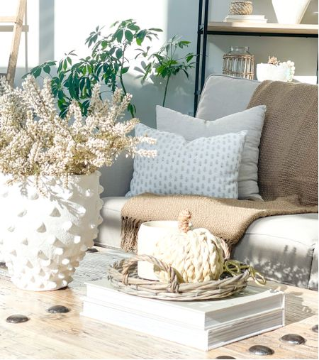 Fall living room decor Fall decor   #LTKhome #LTKSeasonal
