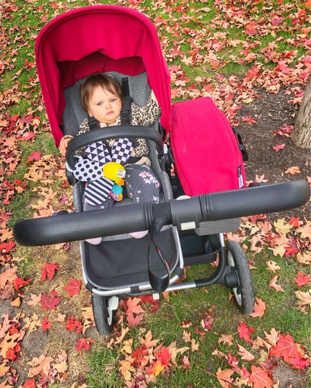 For some reason my grumpus refused to smile. She did enjoy the walk and even fell asleep. We sang, babbled, said a whole lot of dada (even though there was no dada on the walk 🙄) and practiced some screams! All in all was a fun time with my baby girl!   She is wearing an adorable and en vogue sweater from Gap and cute joggers from Carters. We don't go anywhere with Jacques 🤣   http://liketk.it/2G5pw #liketkit @liketoknow.it #LTKbaby #LTKkids #LTKfamily #bugaboobabe #bugaboodonkey #bugaboo #momandbaby #motherdaughtergoals #babygirl #chloeisabella #babyhood #babycenterbabies
