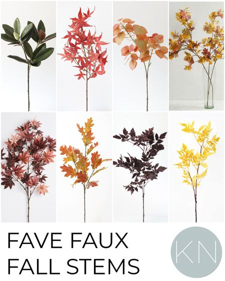 Fave fall stems to add to your home now! Home decor fall decor fall branches faux floral  #LTKhome #LTKunder50 #LTKSeasonal