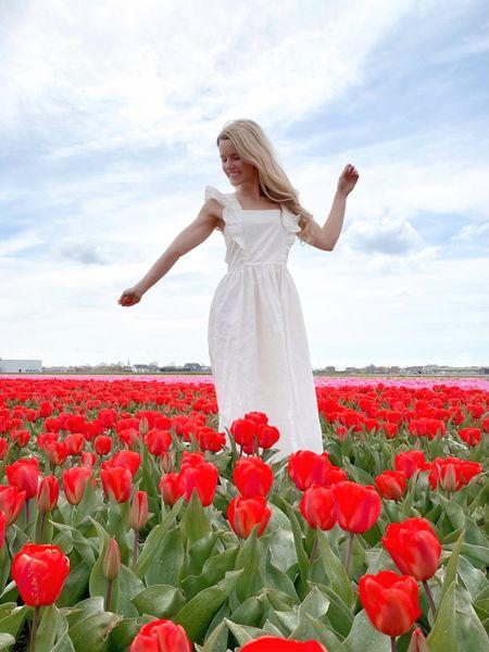 The best spring poplin dress 🤍 US link is first. http://liketk.it/3fQis #liketkit @liketoknow.it @liketoknow.it.europe