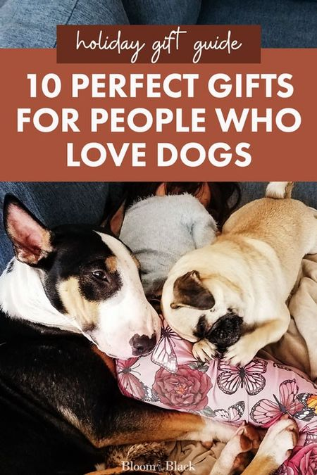 Pet parents sometimes are forgotten during the holidays! This gift guide for dog lovers has great ideas to spoil your favorite dog owner. #doglover #petparent  #LTKgiftspo