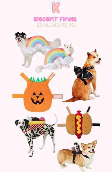 DOG HALLOWEEN COSTUMES  #LTKunder100 #LTKSeasonal #LTKunder50