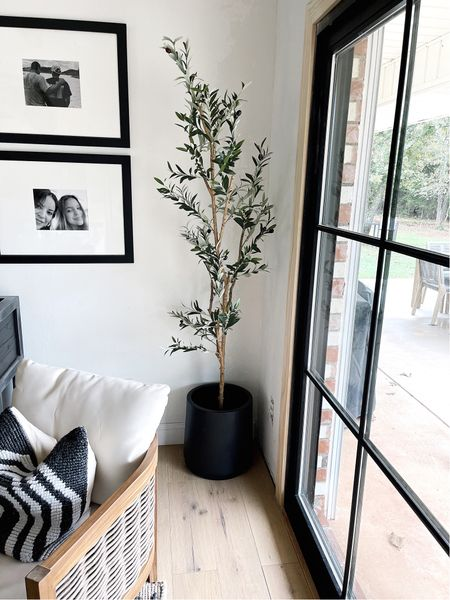 This olive tree is on sale and free shipping! These chairs are also on sale 🙌🏽.   #LTKhome #LTKsalealert #LTKGiftGuide