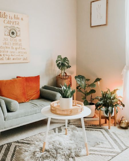 What do you love about this space? What would you add?   I love the burnt orange pillows and plants! So inviting!    http://liketk.it/36DJg #liketkit #LTKSeasonal #StayHomeWithLTK #LTKhome @liketoknow.it