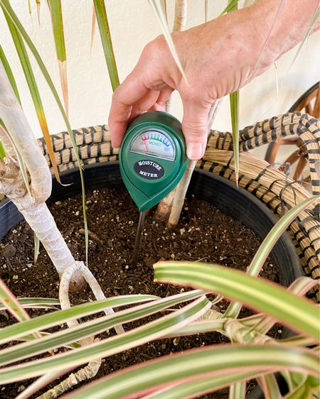 I LOVE this soil moisture meter for my large houseplants. It helps me determine when I should water my plants so I don't overwater or underwater my houseplants. A plant water monitor is great for beginners and people who tend to overwater. soil hydrometer, plant water meter, soil meter, houseplant tools, houseplant help  #LTKhome