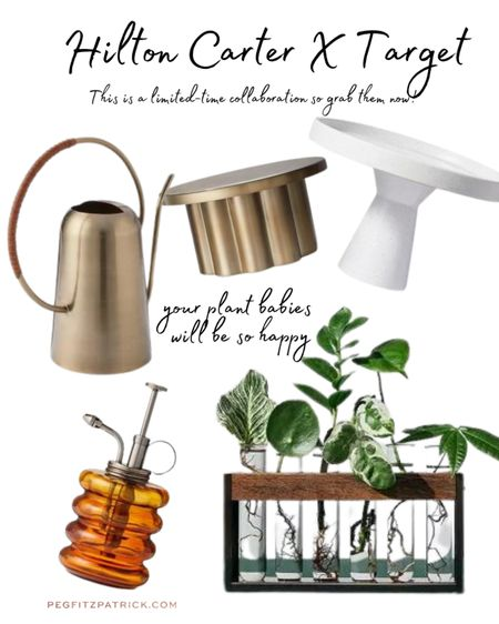 So excited for this collab! Plant whisperer Hilton Carter created a gorgeous line at Target. Affordable and must-have for plant mamas like me! 🌱🌿  Grab them quickly because they'll sell out in a snap. #LTKunder50 #LTKhome #LTKunder100   http://liketk.it/3e2wi #liketkit @liketoknow.it