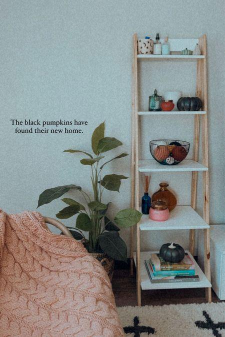Fall decor on my ladder shelf Target fall finds Pumpkins Bookshelf book Knit blanket Candles for fall   #LTKSeasonal #LTKunder100 #LTKhome
