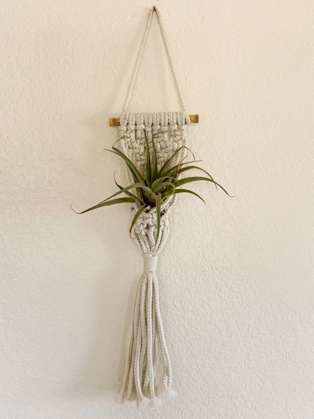 This woven wall hanger is great for displaying air plants. Small succulents would be cute inthese too. Houseplant decor macrame wall decor macrame  #LTKhome #LTKstyletip #LTKunder50