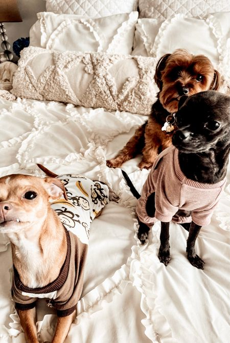 Neutral bedroom decor for Fall. Pottery Barn Table Lamps. Monkey Pajamas for dogs. Love You To The Moon Pet Pajamas. #amazonfinds #amazon #wayfair #potterybarn   #LTKSeasonal #LTKhome #LTKstyletip