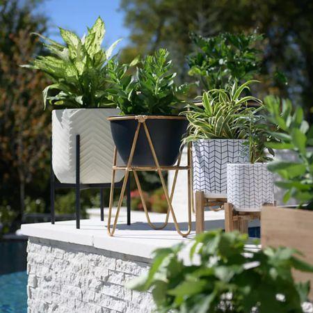 http://liketk.it/3iBfF #liketkit @liketoknow.it #LTKhome #LTKsalealert #LTKstyletip #homedecor #planter #garden #outdoors #homestyle #patio #patiodecor