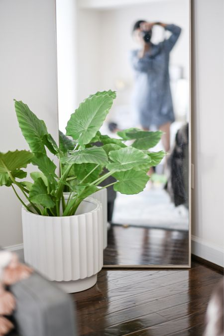 """For someone with a """"black thumb,"""" this plant has proven to be pretty self sustaining. I'm admiring the pop of green against this all white planter.   Got this floor length mirror at Homegoods while there are many more on my radar. I think Every room, whether it's living room or bed room, needs a mirror To bring in light and create an illusion of a larger space.  I still need about 2-3 of them to add to my overall home decor.   #LTKhome #LTKstyletip #LTKfamily"""