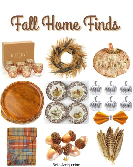 Fall home finds from Amazon!   #LTKhome #LTKunder100 #LTKfamily