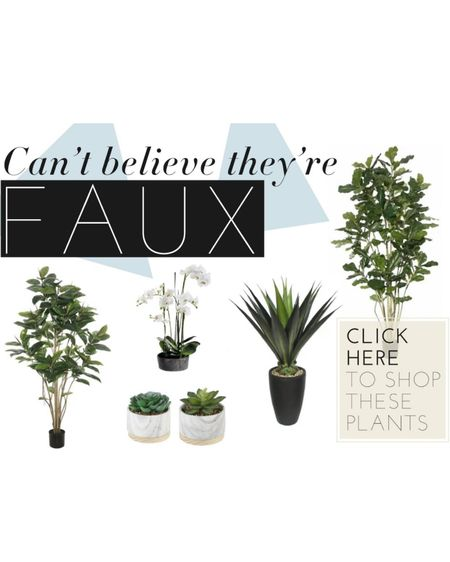 I can't believe they're faux! The best faux plants and floral out there. Shop our picks. #plants #orchids #biophelicdesign #bringnaturein #homedecor #green #fiddleleaffigtree #succulents http://liketk.it/2NmeY #liketkit @liketoknow.it #LTKspring #LTKhome #StayHomeWithLTK @liketoknow.it.family @liketoknow.it.home